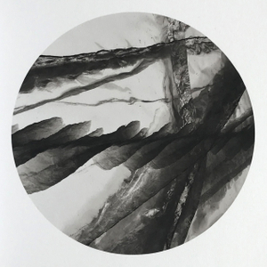 ' Baikal  -  Sacred Sea '  Plate No.: 15