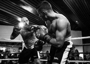 Light heavyweight punches