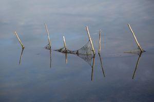Pesca nella laguna