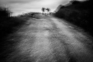 © Mariano Silletti