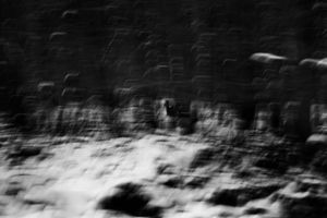 Michał Korta, Untitled (#0031391) from the The Shadow Line series