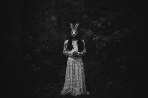 Little Moon Rabbit