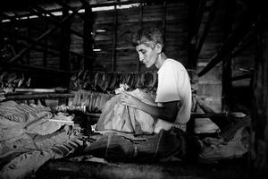 Tobacco  Worker