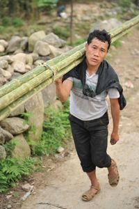 Vietnamese Worker, Sapa