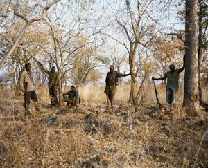 hunting party, zimbabwe-from the series 'hunters'-David Chancellor