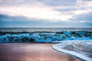 Ocean life21
