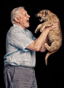 Sir David Attenborough with a baby lion by Mark Harrison