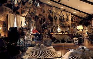 untitled hunter # I, trophy room, dallas, texasrecipient of the Outstanding Hunting Achievement Award, and the Africa Big Game Award-from the series 'hunters'-David Chancellor