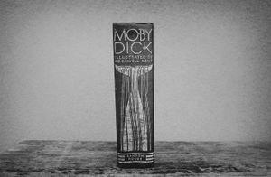"""""""Moby Dick"""" © Lisa Blair"""