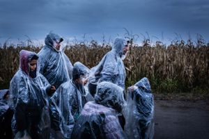 November 2015, no man's land between Serbia and Hungary. Refugees walk disoriented in between Serbia and Hungary. There is a total lack of information on the Balkan route. Refugees are easy victims for smugglers. There are no facilities here despite the needs. Only some volunteers hand out rain coats and clothes.