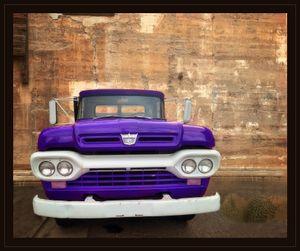 Purple Stands Alone