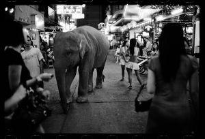 Bangkok, 2007