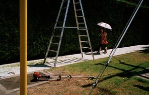 The big ladder, 2009