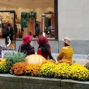 """Fall foliage trip to Rockefeller Center"""