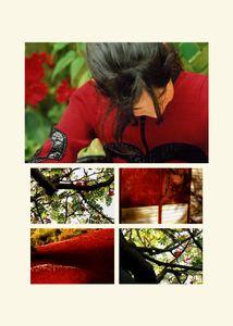 N°58 - Passage - Rouge carmin - 2008.