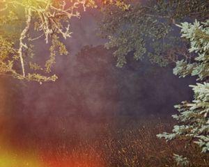 """""""Exposed - - fog,"""" whispered."""