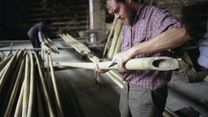 An American entrepreneur carefully selects Tonkin bamboo poles - Guangdong province, China.