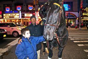 Policeman on a Horse© Monika Pia