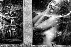 Il bacio della donna ragno