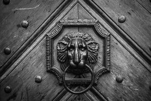 Lev (Lion)