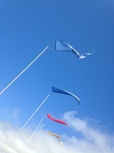 Beach Flags, Santa Cruz, California