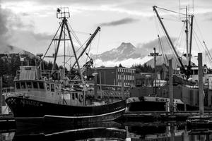 Alpine harbor
