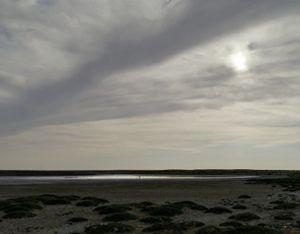 The Aral Sea VI (After Robert Adams), Kazakhstan 2011 © Nadav Kander