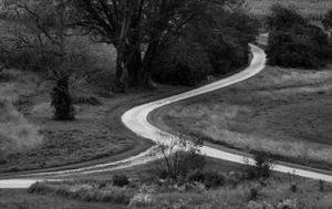 Taliesin Road