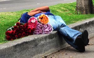 El vendedor de rosas
