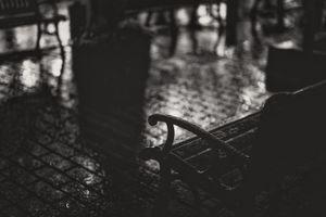 bench and rain