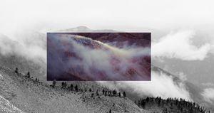 Mount Frosty Larch Revelation