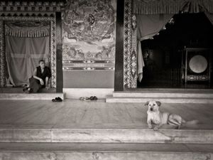 Monk and dog at Pullahari monastery