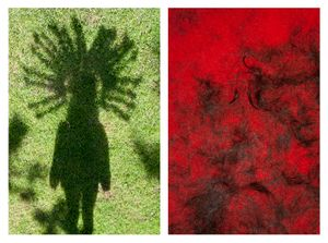 Indian shadow & Hair on red carpet