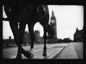 Untitled (Horse Westminster Bridge ), 2012