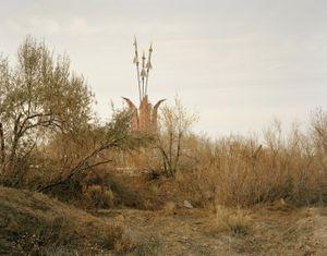 Priozersk II (tulip flowers), Kazakhstan © Nadav Kander, part of the Prix Pictet retrospective