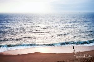 Ocean life20