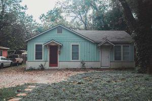 THE MIST HOUSE