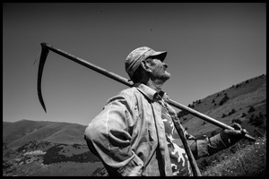 Hovik does traditional haymaking. Many people continue to use the scythe and pitchfork to cut and sort the hay.