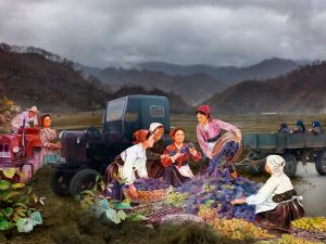 Harvest Time, North Korea, 2013. Courtesy of the artist.