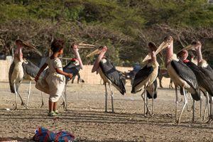 Etiopia 2017 bellezza e  raccapriccio