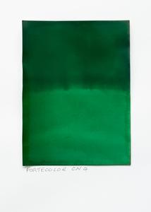 FCCN4 (PP01.1+4-PF05.1+4)190524 #1