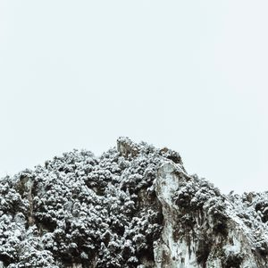 Trasposizione D'Inverno 9