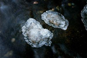 Hidden Forms in Ice 3