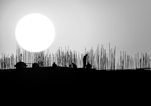 The Sun Supervising the Workers