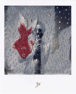 N°65 : Dead Goldfish
