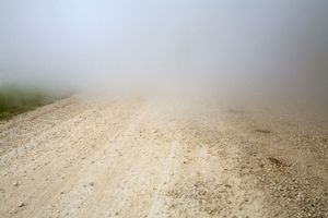 Fog © Cynthia Bittenfield