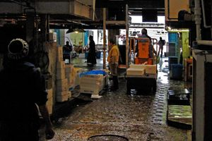 the market is over; empty boxes are transported outside ....