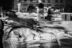 Horse and Carriage in Rynek Glowny