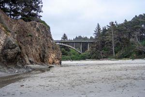 Bridge at Jug Handle State Reserve, Ft. Bragg, California