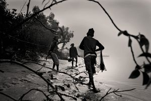 A father, son, and uncle cast their net to catch fish at dawn. Sunderban, Satkhira. © Munem Wasif/VU'